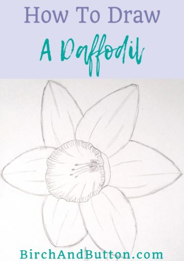 This is a beautiful time of year for all kinds of gorgeous flowers, and I think my favourite spring flower is the daffodil. Click through to learn how to draw this bright, sunshine-yellow spring flower step-by-step.