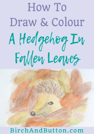 Embrace autumn with me by following along with my drawing tutorial. In this blog post I'll teach you how to draw a hedgehog and then how to add colour to your doodle with watercolour pencils. Click through for the step-by-step instructions!